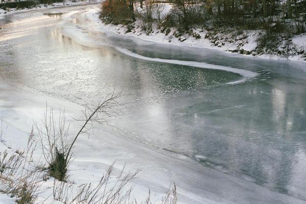 Elbow River (Stanley Park), Alberta, 2020